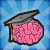 Brain Shapes